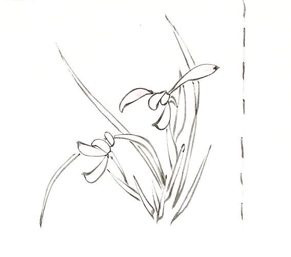 令和の染め帯(着物)
